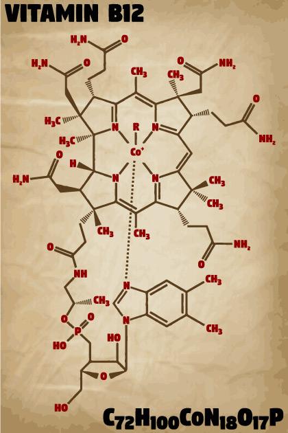 Molekula B12