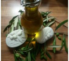 Kurz: Olivovník a výroba olivového mýdla
