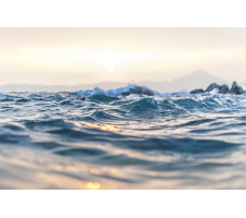 Přednáška: Léčivá síla a energie vody