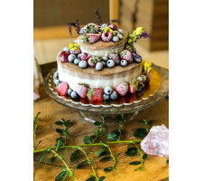 Kurz RAW dortů a dezertů