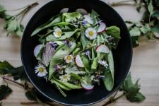 Jarní salát s divokými květy