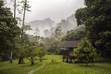 Jak se zachraňuje prales