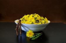4 byliny pro zdravá játra, které byste měli znát
